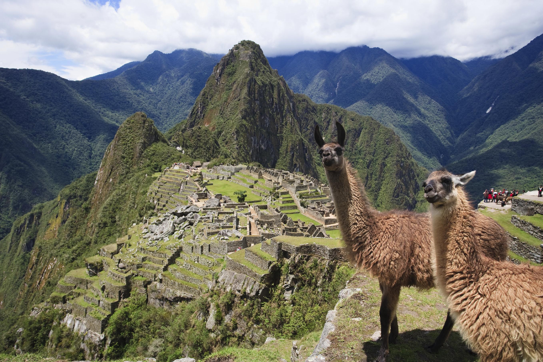 Macchu Picchu Alpaca Tours